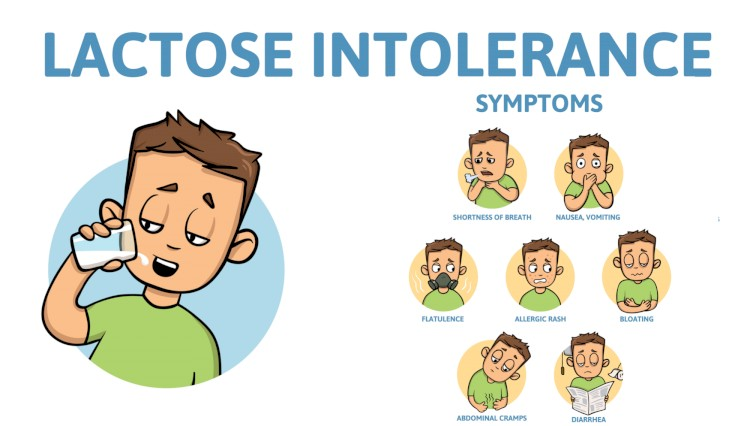 Lactose Intolerance Infographic