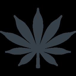 Does Cannabis Marijuana Interact With Benzodiazepines
