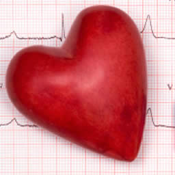 Supplements For Cardiac Ablations