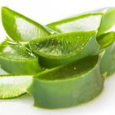 Aloe Vera Juice Drug Interactions