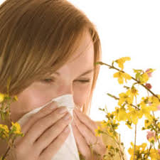 Do You Need To Take Allergy Medication Everyday?