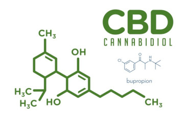 CBD (Cannabidiol) With Bupropion Interaction