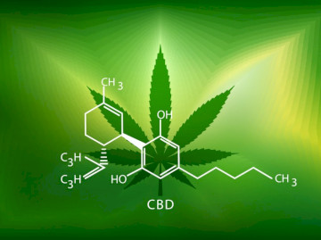 Neurontin (Gabapentin) With CBD Oil Interaction
