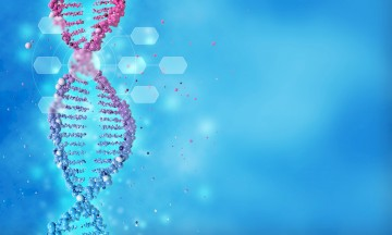 Genetic Testing For Allopurinol And The Risk Of Severe Skin Reactions