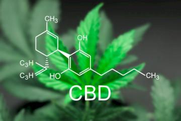 Does CBD Interact With Zoloft (Sertraline)?