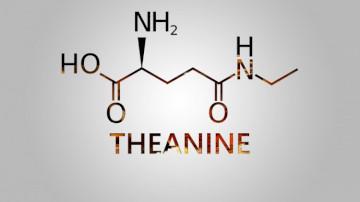 Taking L-Theanine With Lexapro (Escitalopram)