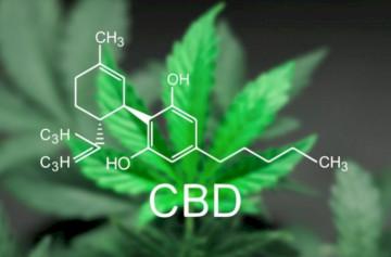 Taking CBD (Cannabidiol) With Benadryl
