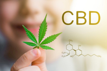 Does CBD Interact With Trazodone Or Effexor?