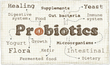 Probiotics For Kids: Pharmacist Thoughts