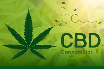 Do Aspirin Or Zyrtec Interact With CBD (Cannabidiol)?