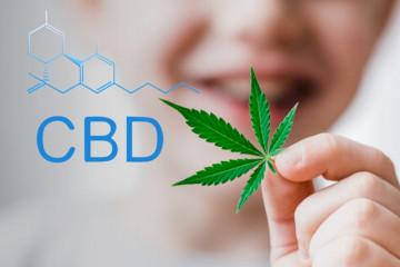 CBD Oil Interaction With Prozac (Fluoxetine)