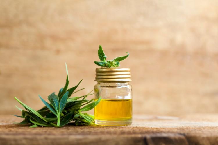 CBD oil in jar on table
