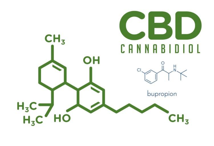 CBD With Bupropion