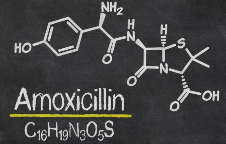 How Long Amoxicillin Lasts In The System