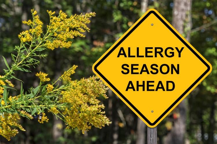 Allergy Sign