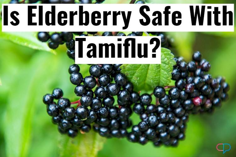 Elderberry Closeup With Text