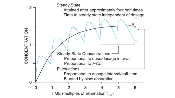 Steady State Concentration Graph From Goodman Gillman